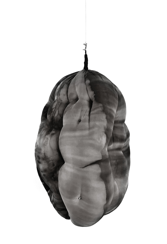 | Obra de Paula Klien | Exposição Extremos Líquidos